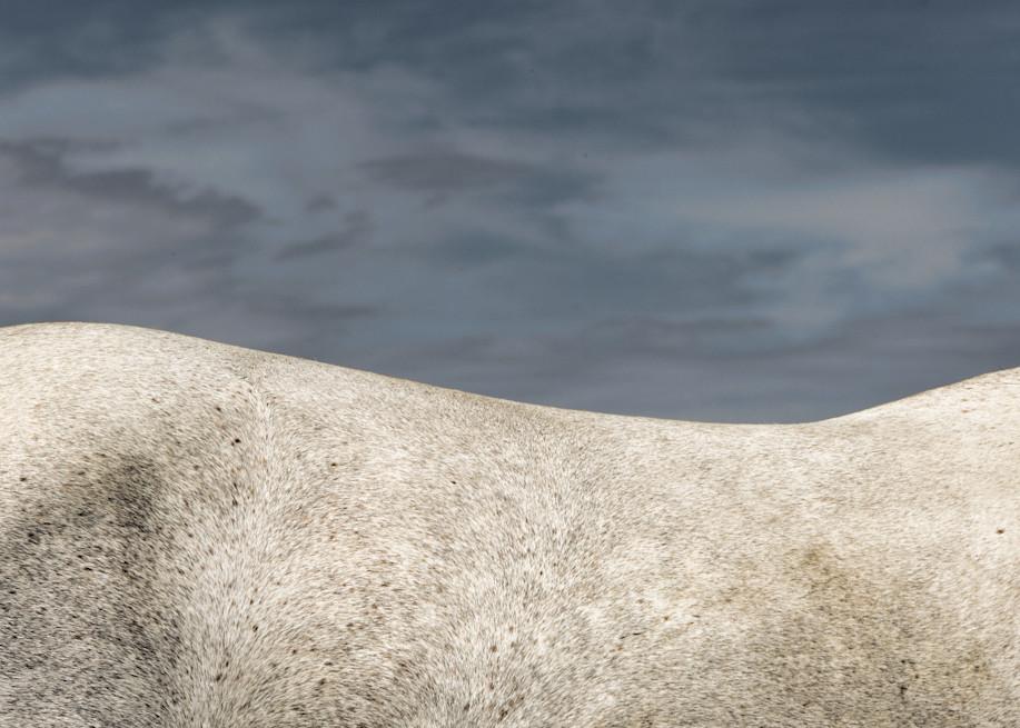 Curve Photography Art | Craig Edwards Fine Art Images