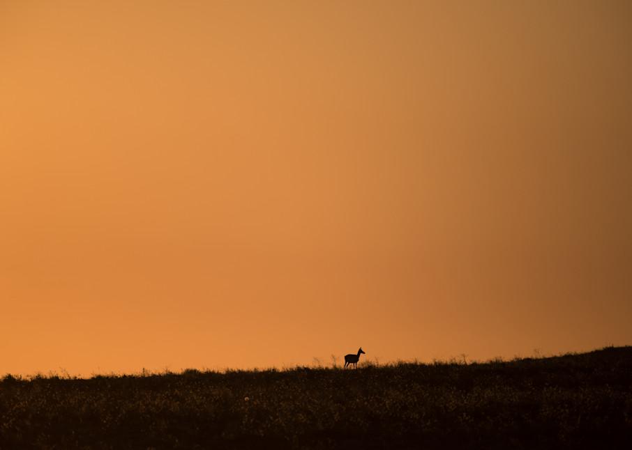 Antelope Sky Photography Art | Craig Edwards Fine Art Images