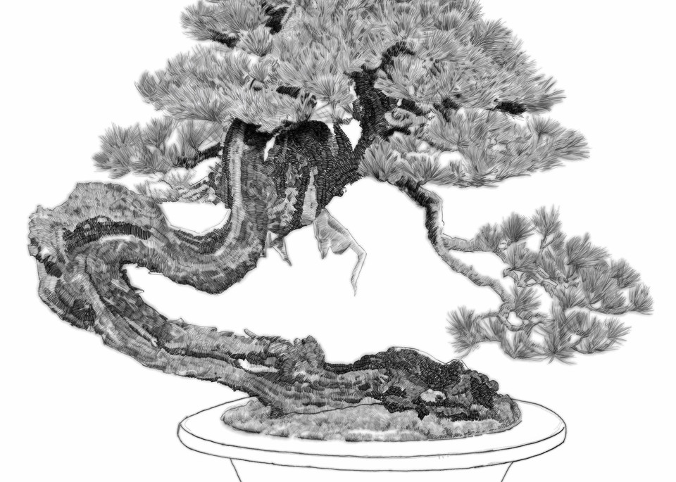 """Digital etching by Eric Wallis, inventor of the technique, titled, """"Bonsai Five."""""""