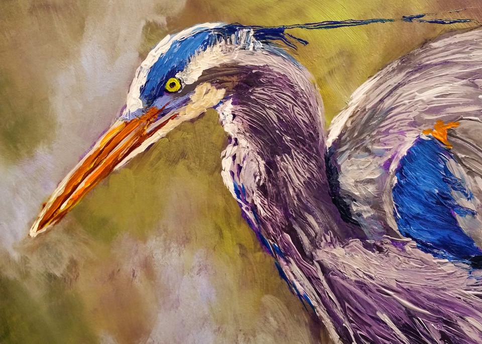 Original Square Great Blue Heron | Fine Art Print by Rick Osborn