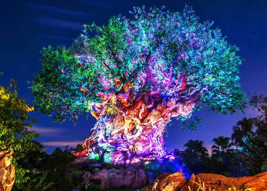 Tree of Life Awakenings - Disney Art for Sale | William Drew