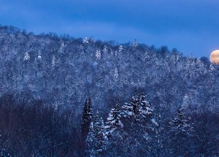 Wolf Moon Panoramic Photography Art | Kurt Gardner Photogarphy Gallery