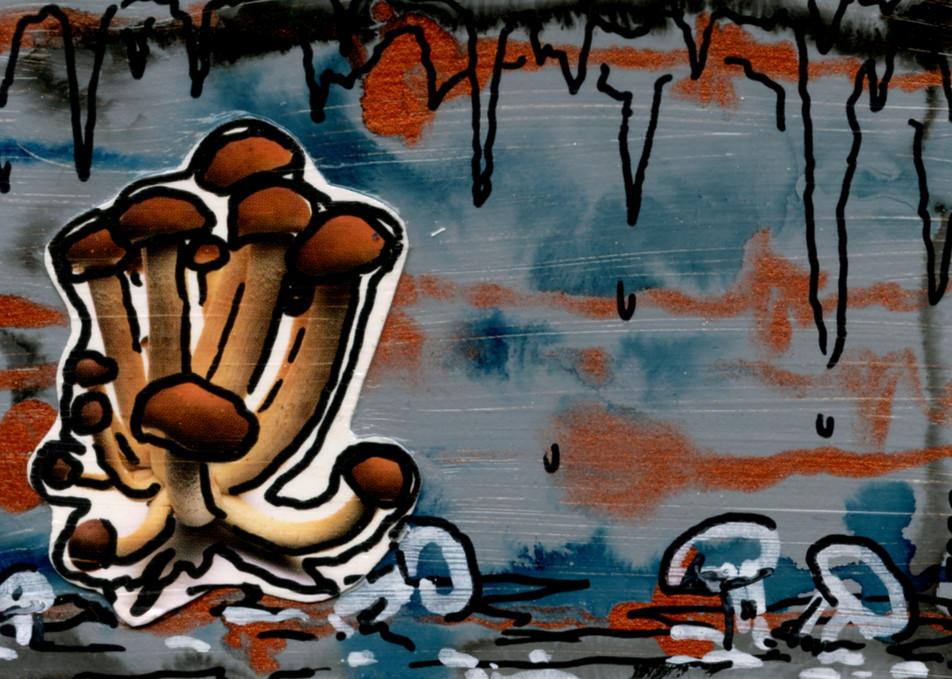 Cavern Art | Laura Coffee