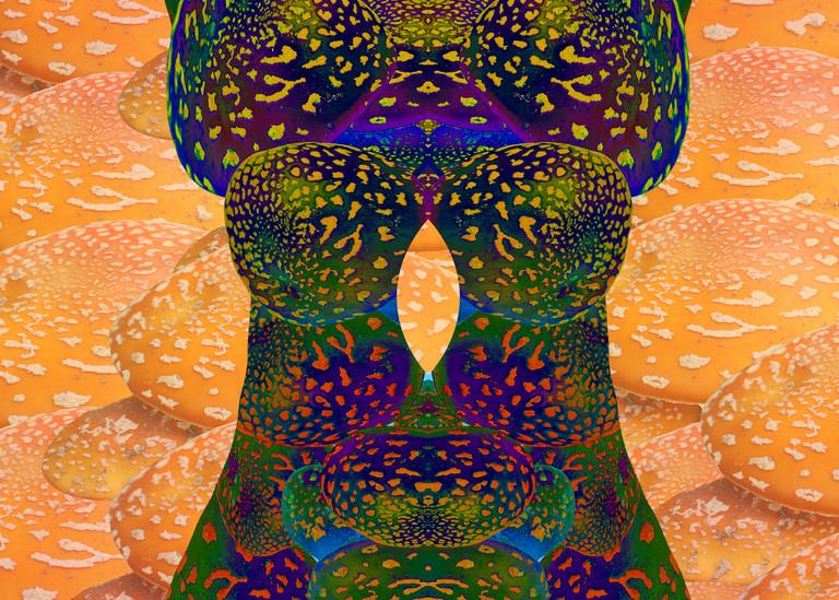Lady Amanita print of photograph of Amanita mushroom transformed into digital art for sale by Maureen Wilks