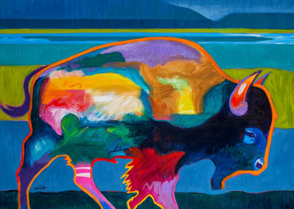 Buffalo in the Foothills | John Nieto