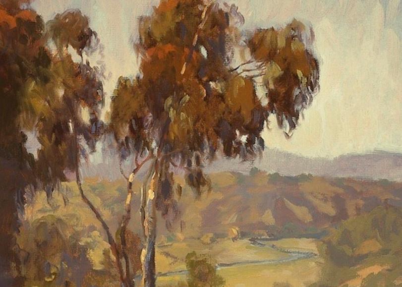 Del Mar Valley Art | Daryl Millard Gallery LLC