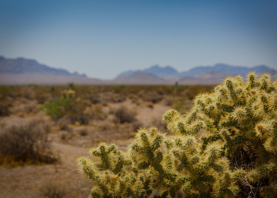 Mountains  Photography Art | Sandy Adams Outdoorvizions Photography