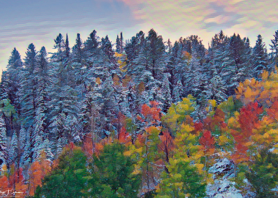 Autumn To Winter Photography Art | Images2Impact
