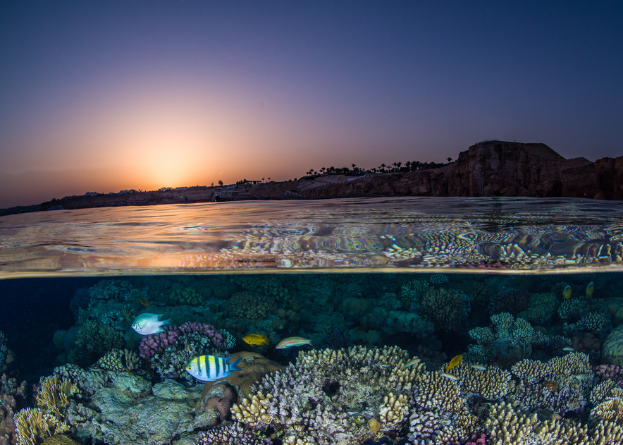 Sunset over Reef