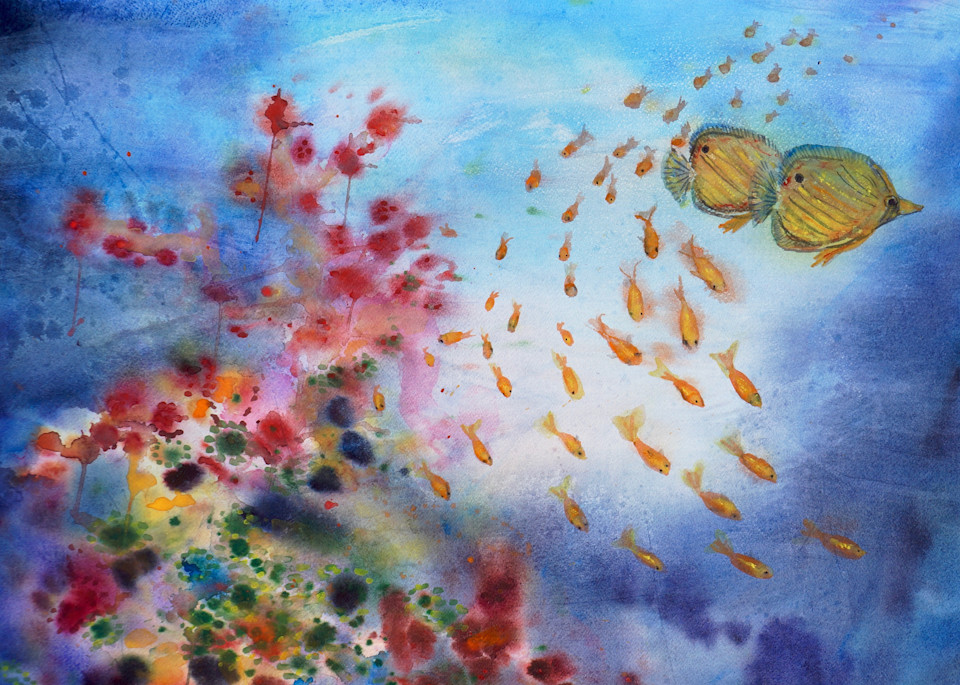 Coral Reef - Fine Art Prints on Canvas, Paper, Metal & More by Irina Malkmus