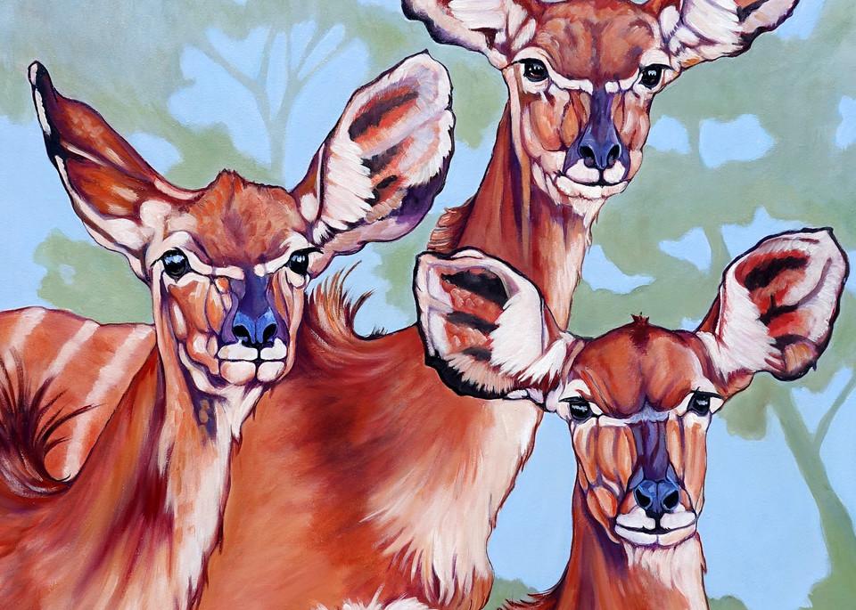antelope, deer, african wildlife
