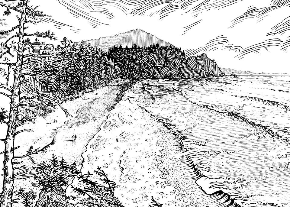 Short Sands Pen and Ink by Spencer Reynolds