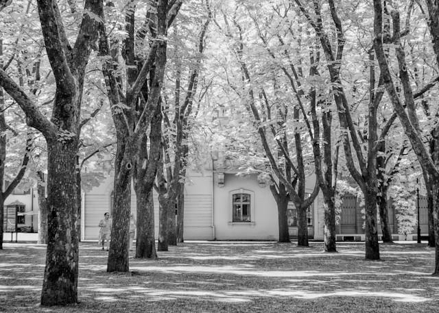Basel Church Art | Peter J Schnabel Photography LLC
