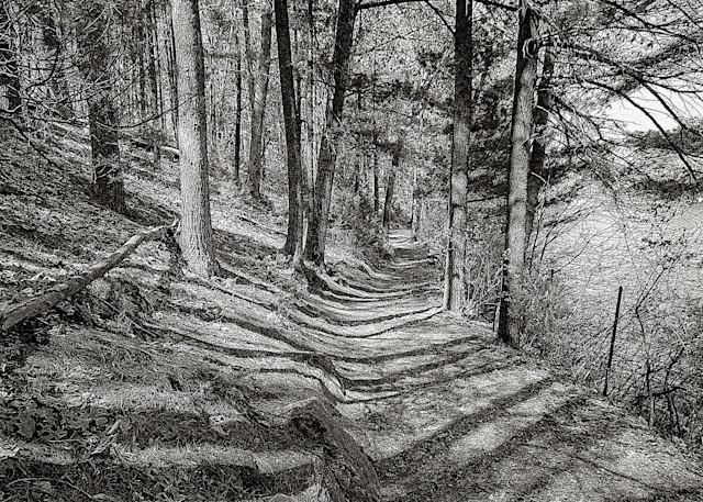 The Poets Walk Art | Peter J Schnabel Photography LLC