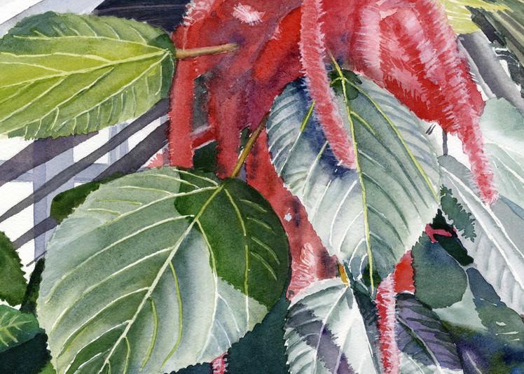 Red Chenille Garden Botanical Flower Print
