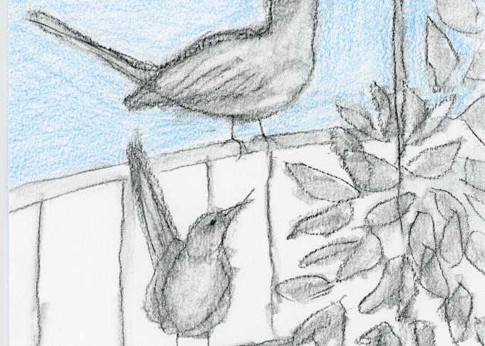 Mockingbirds, Blue