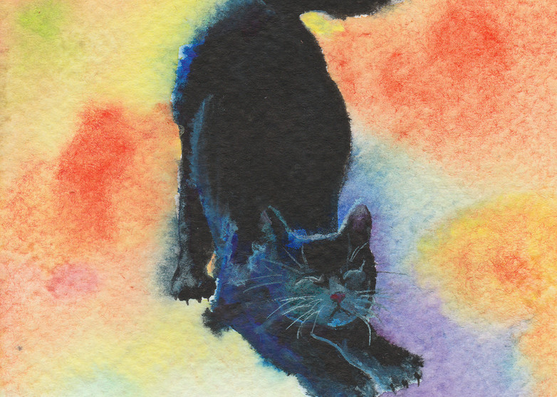 Stretchy Midnight - Black Cat Painting