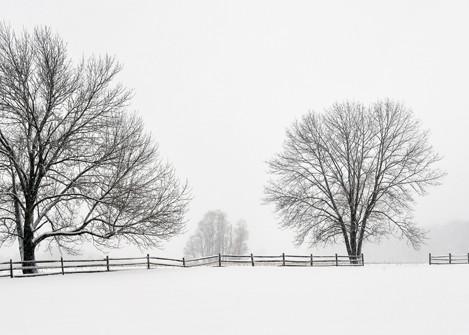 Bucks County Fences II - Michael Sandy Photography