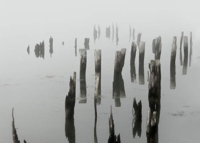 Morning Fog On Sheepscot River Art | Michael Sandy Photography