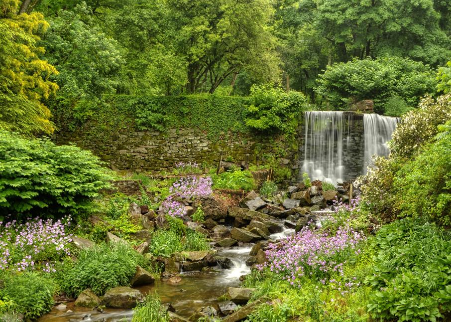 Spring On Cuttalossa Creek Art | Michael Sandy Photography