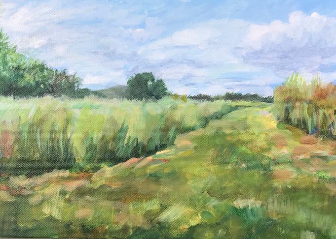 Pasture Path Art | Roost Studios, Inc.