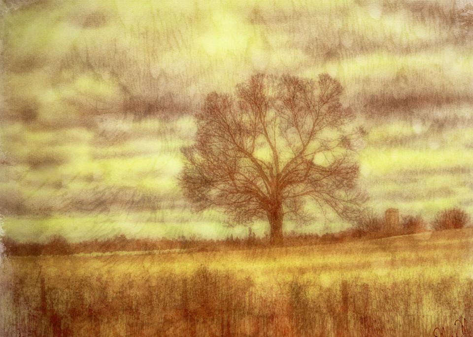 Geoscape Autumn Haze Art | FortMort Fine Art
