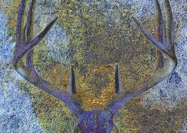 Geoscape Deer Abstract Art | FortMort Fine Art