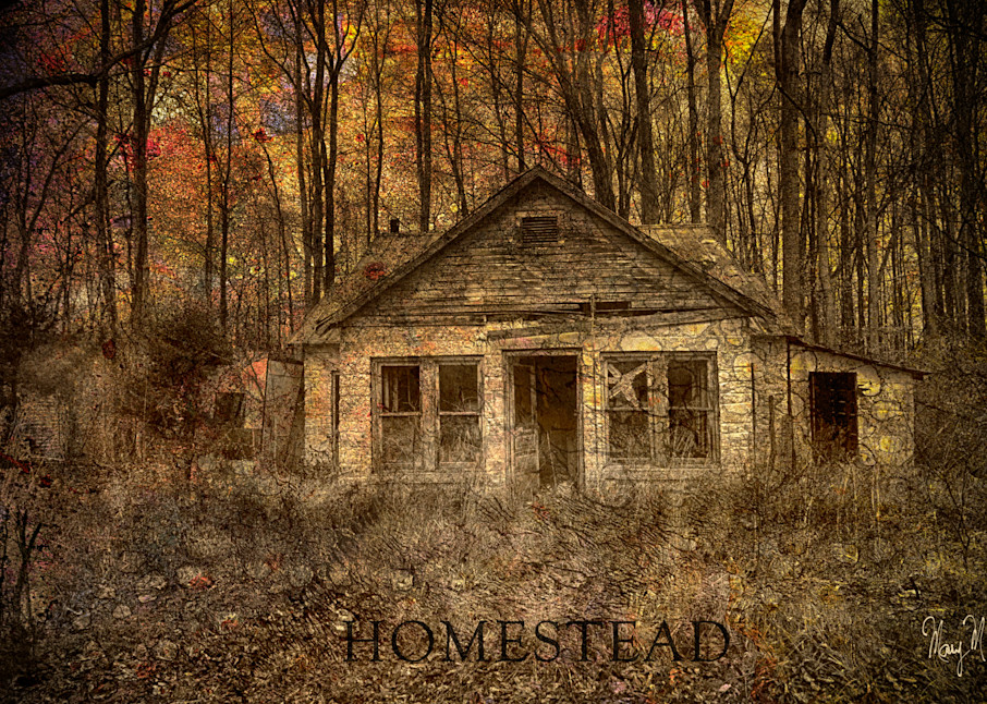 Geoscape Homestead Art | FortMort Fine Art
