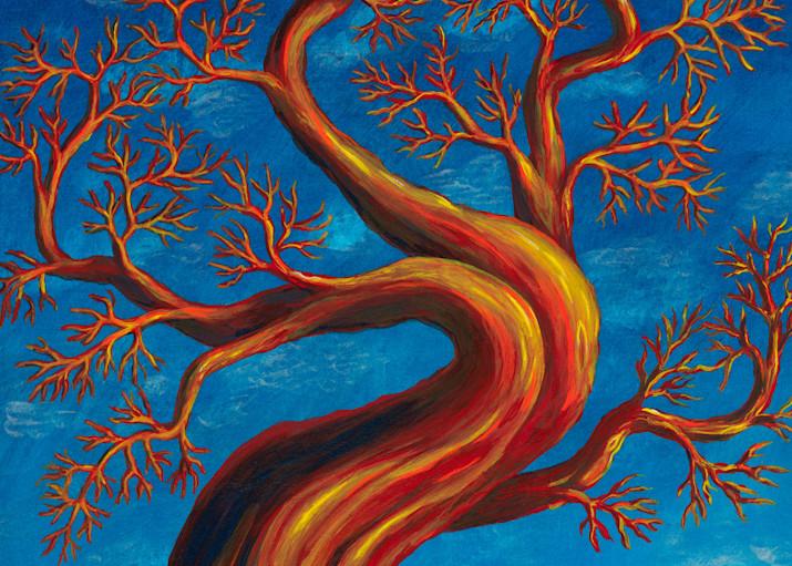Madrona 2 Art   Northwest Image