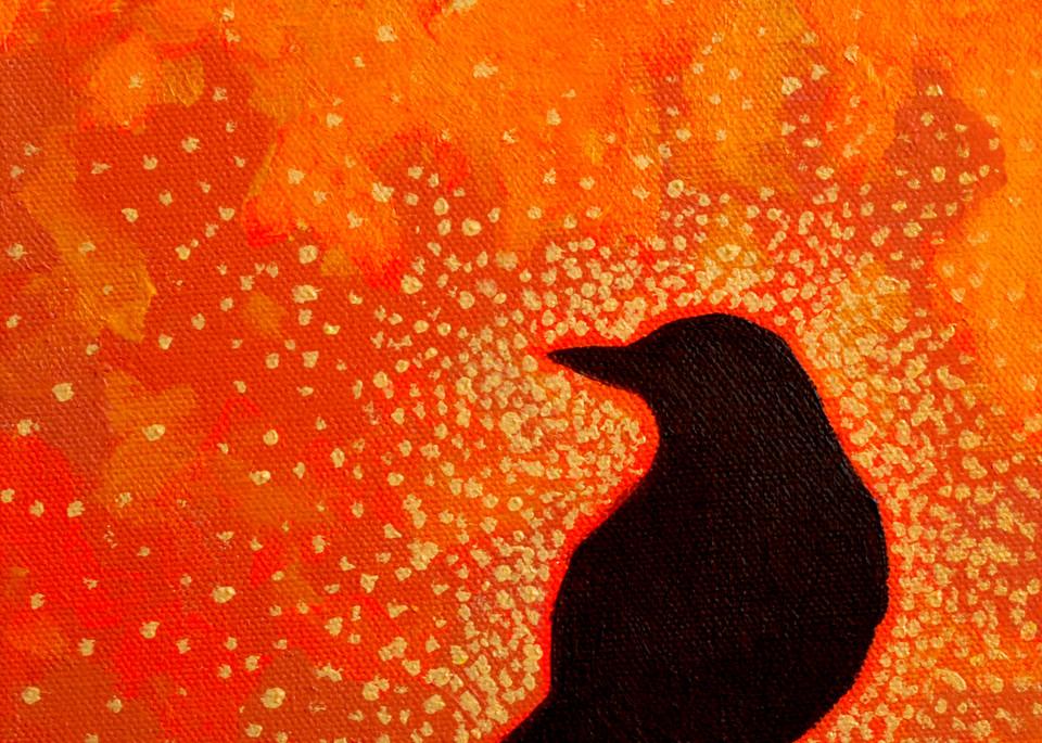 Robin Sunrise, by Jenny Hahn