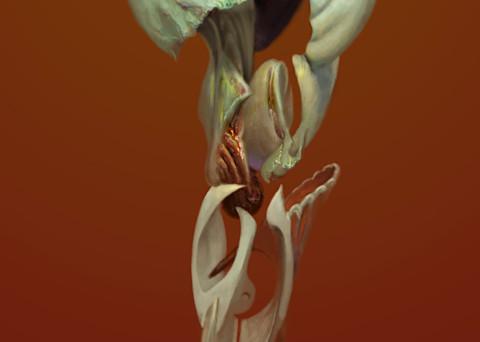 Asf Pesce 1 2 Ratio Art | Burton Gray