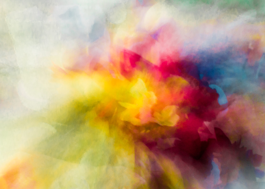 Color Fusion Photography Art | allysonmagda
