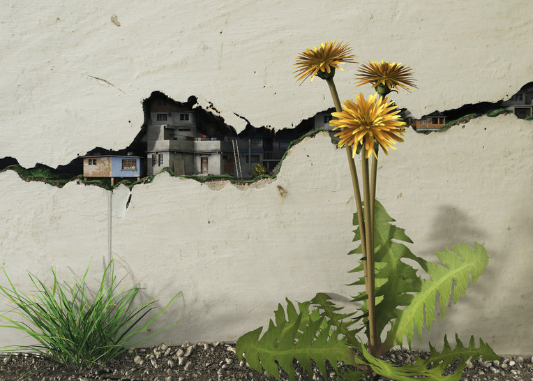 Between the Cracks | Cynthia Decker
