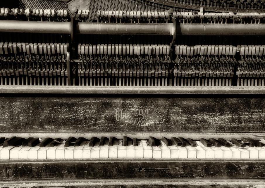 Still Upright | Victor Chicago Piano Photograph | Instrumental Art