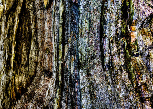 Lines In The Stone - The Bogey Hole Newcastle NSW Australia | Abstract Limited Edition