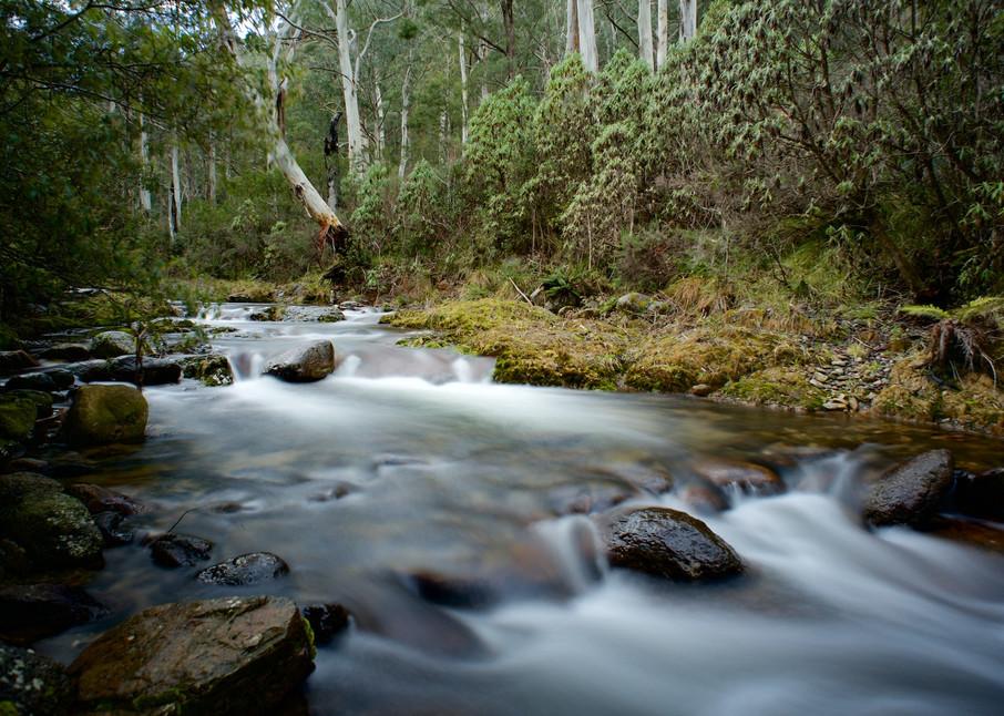 Alpine Flow - Leatherbarrel Creek Khancoban Kosciuszko National Park NSW Australia   Waterfall