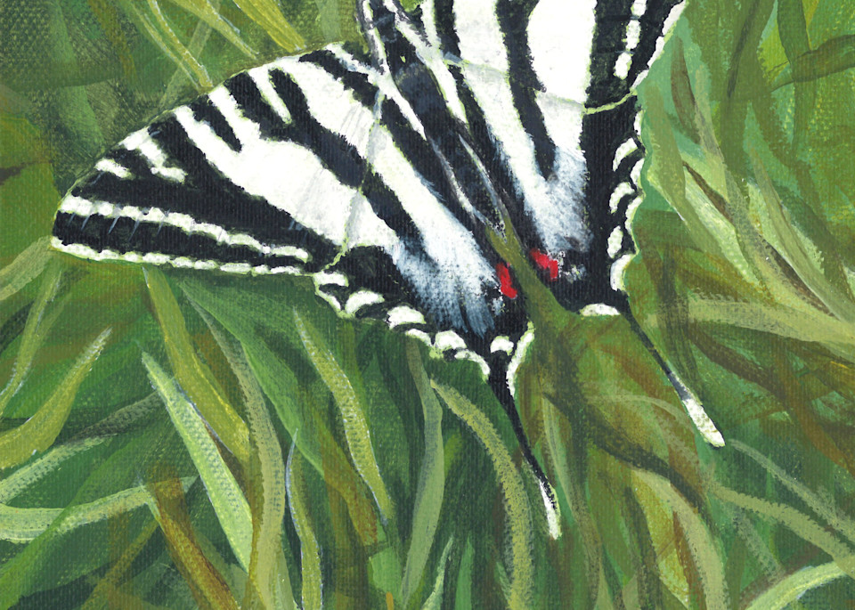 Zebra Swallowtail Art | Lori Vogel Studio