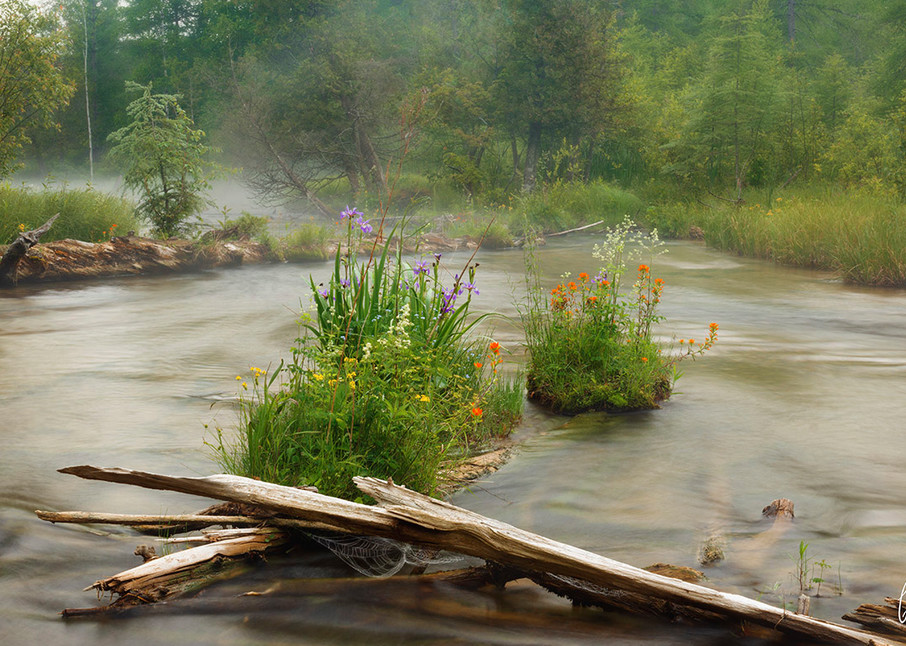 Constance Mier Fine Art Photography - Michigan's scenic and wild rivers
