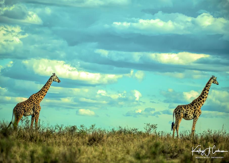 Africa Landscape  6999 Photography Art   Images2Impact