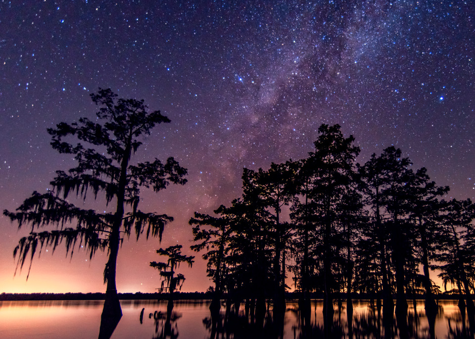 Star bright swamp astro photography
