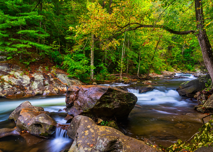 Tellico River mountain stream photography