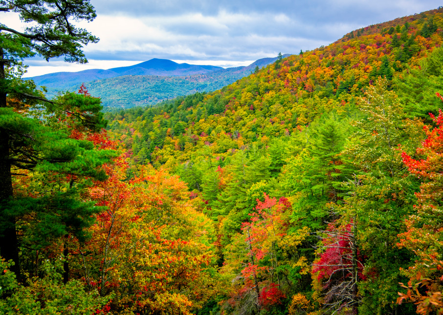 Fall in the Smokies photography