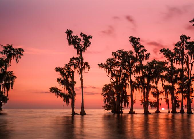 Lake Maurepas swamp sunrise photography