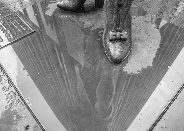 Puddle Reflection - BW - Prints