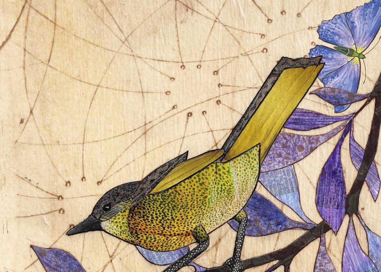 Meadow Vale Art | Karen Sikie Paper Mosaic Studio