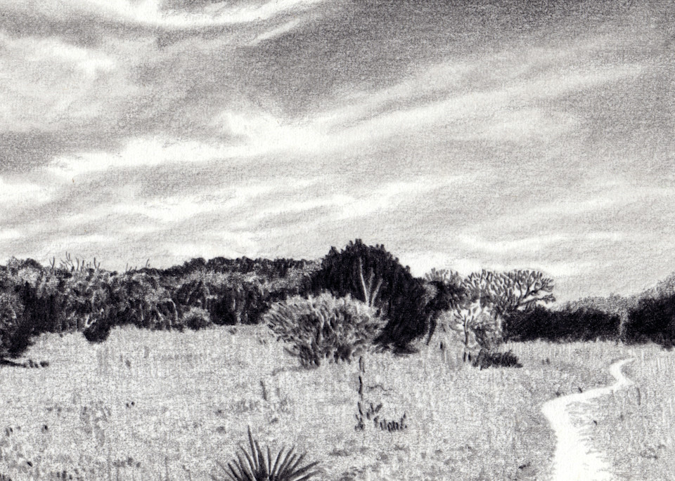 Big Sky, Drawings, The Art of Max Voss-Nester