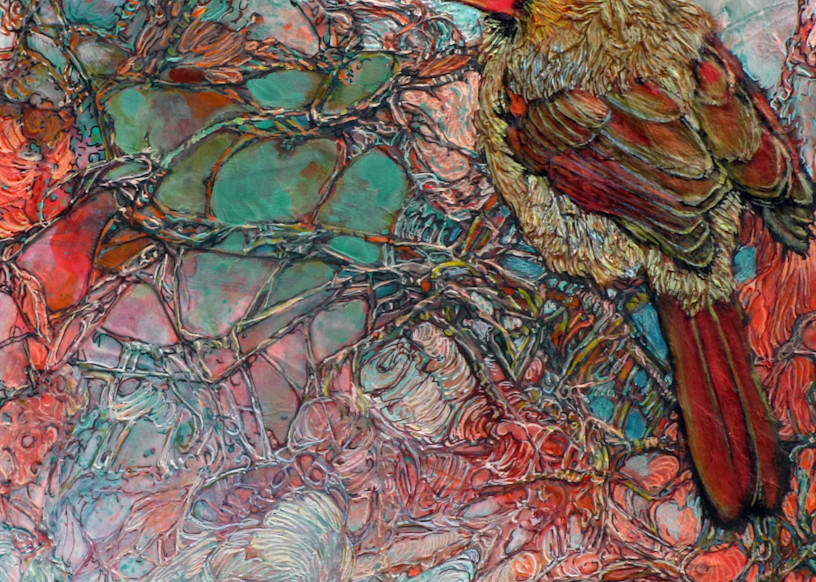 Thicket Starlet, Cardinal | Col Mitchell Contemporary Paper Artist