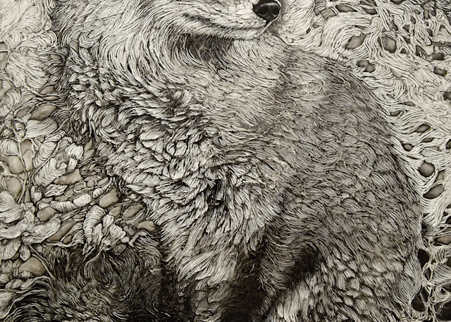 Reynard, Fox | Col Mitchell Contemporary Paper Artist