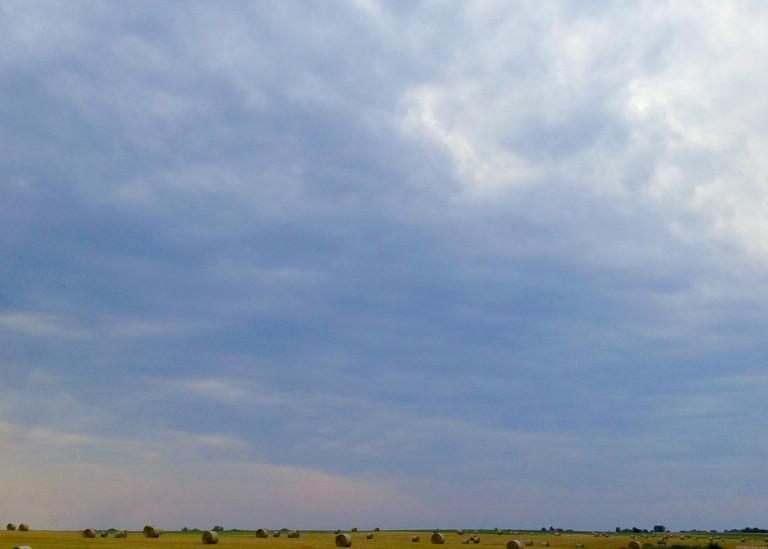 Spring Field Outside Lawrence Kansas