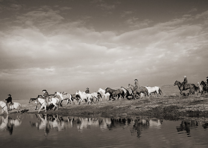 The Crossing Art | Sierra Luna Photography